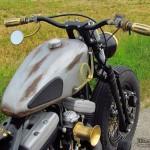 Harley Davidson Softail evo Old Lady, peinture vieillie