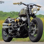 Harley Davidson Softail evo Old Lady,