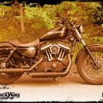 Harley Davidson Sporster Epona, Celtic spirit