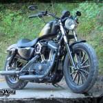 Harley Davidson Sporster Epona