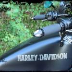 Harley Davidson Sporster Epona, lettrage celtic sur le réservoir